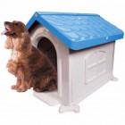 Casinha Cachorro Plástica Desmontável Azul N.3